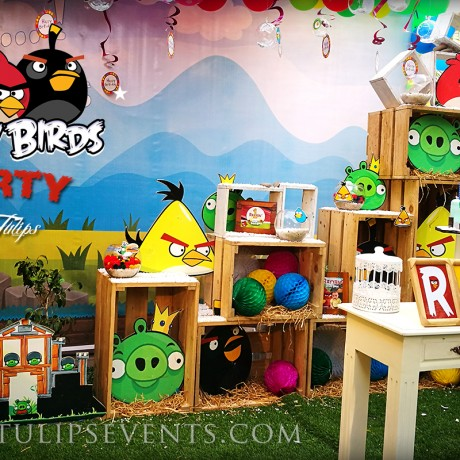 Angry Birds Party Theme