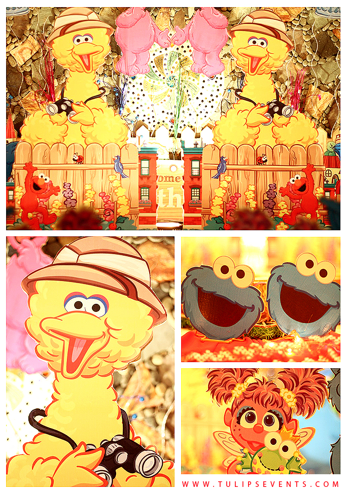 Sesame Street Birthday Party Ideas Pakistan