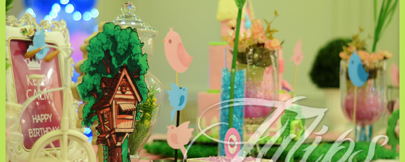 Cute Little Birds Themed Party ideas in Lahore Pakistan (12)