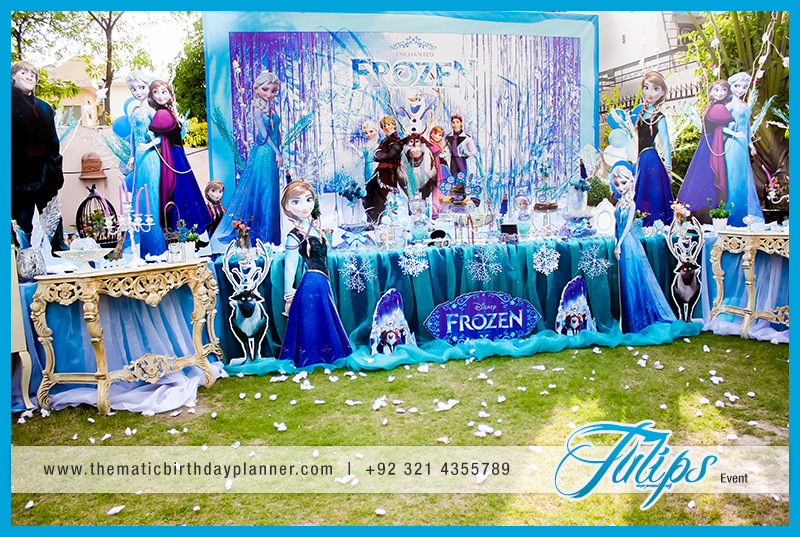 Frozen Wonderland Party