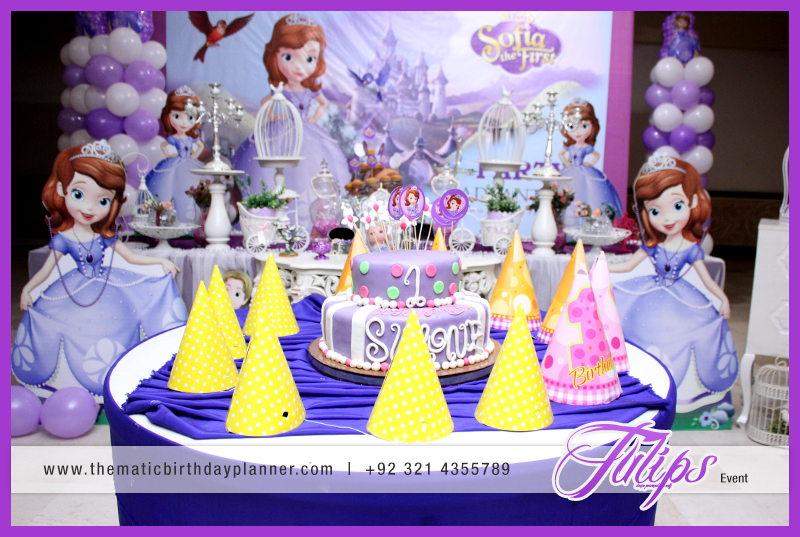 Princess Sofia First Party Ideas For Girls In Pakistan