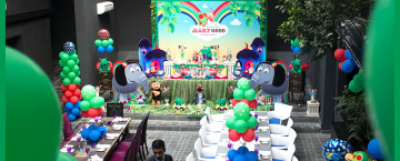 baby tv birthday party theme ideas in Lahore Pakistan 14