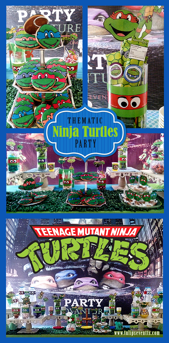 Teenage Mutant Ninja Turtles Birthday Party Ideas Pakistan