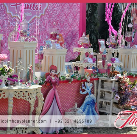 Pink Girls Party Theme