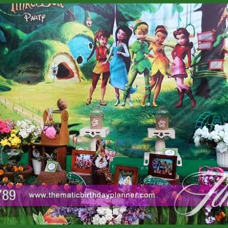 Fairy Tinkerbell Party Theme
