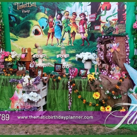 Tinker Bell Fairy Party