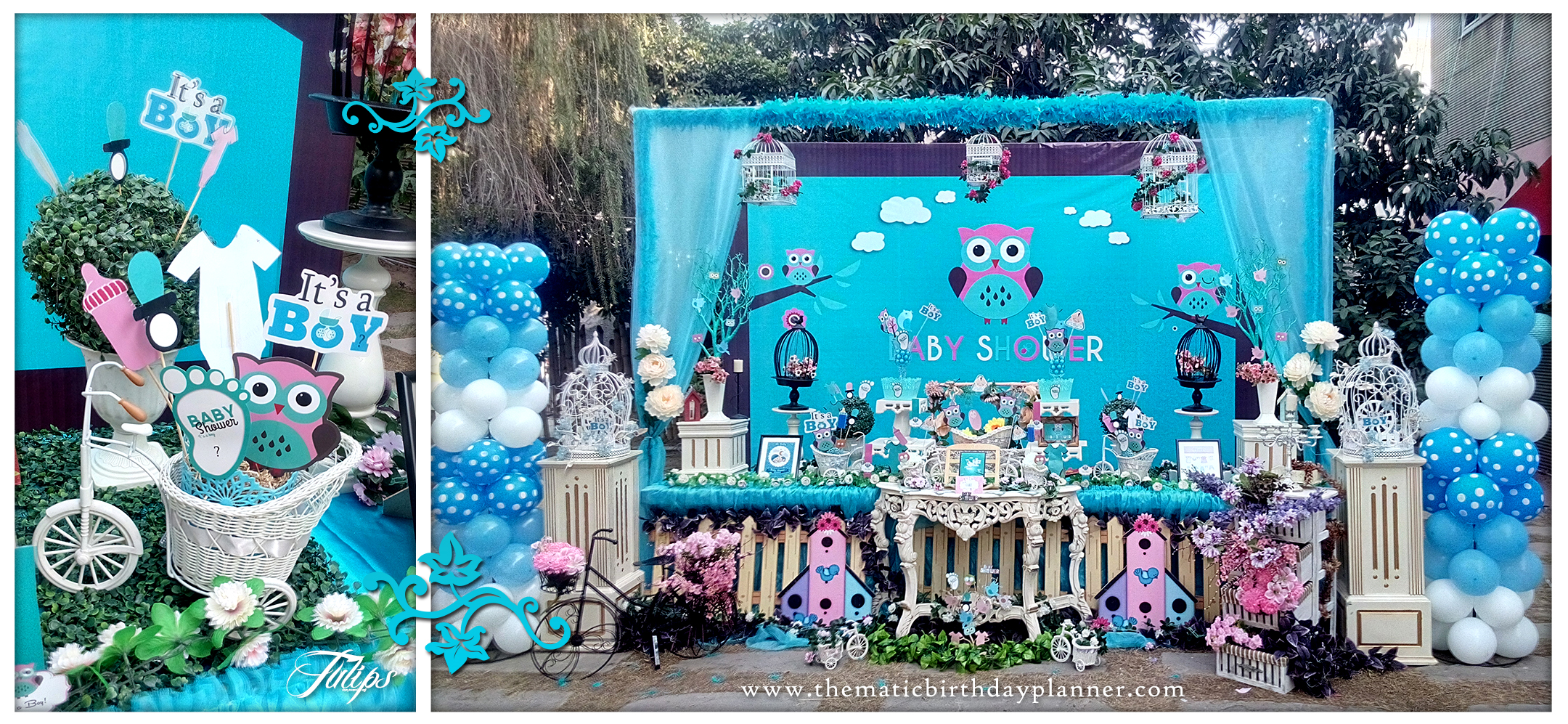 Owl Baby Shower Party Planner Ideas In Pakistan