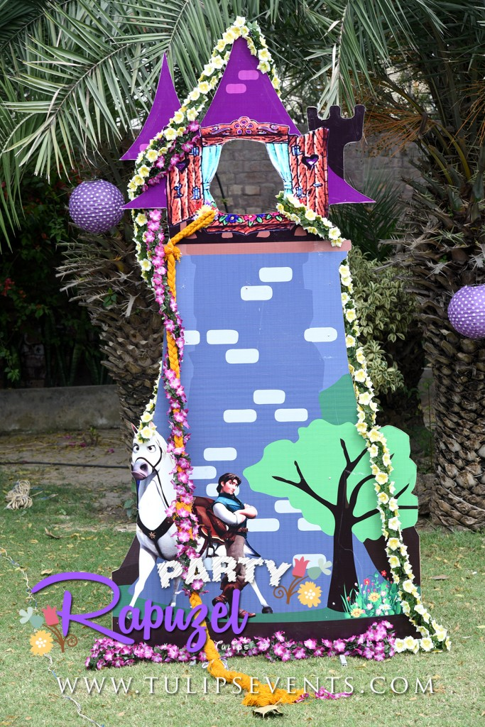 rapunzel tangled outdoor party decor ideas in Pakistan-