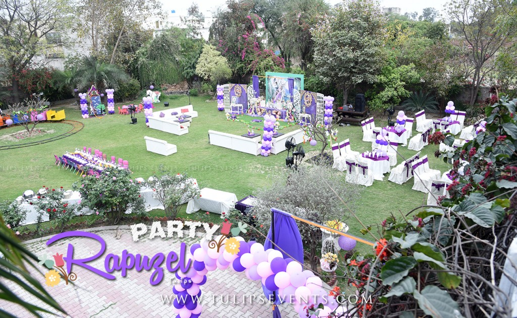 rapunzel tangled outdoor party decor ideas in Pakistan (2)