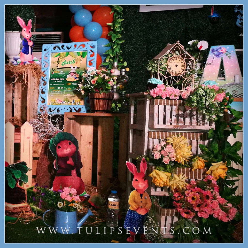Peter rabbit first birthday gorgeous party ideas in pakistan for Rabbit decorations home