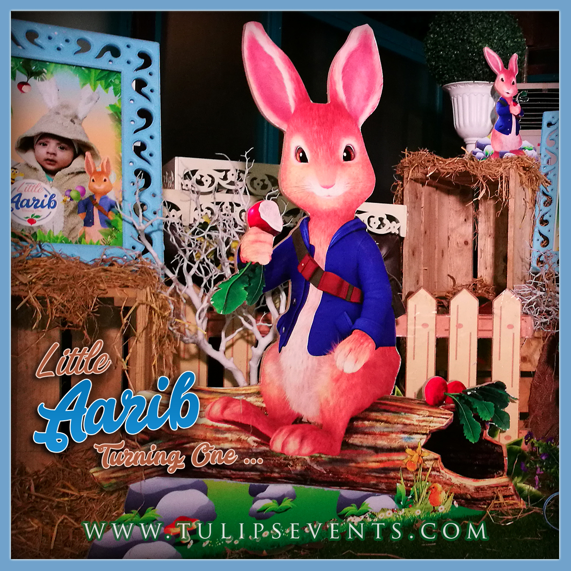 peter-rabbit-themed-1st-birthday-party-decoration-ideas-in-pakistan-6