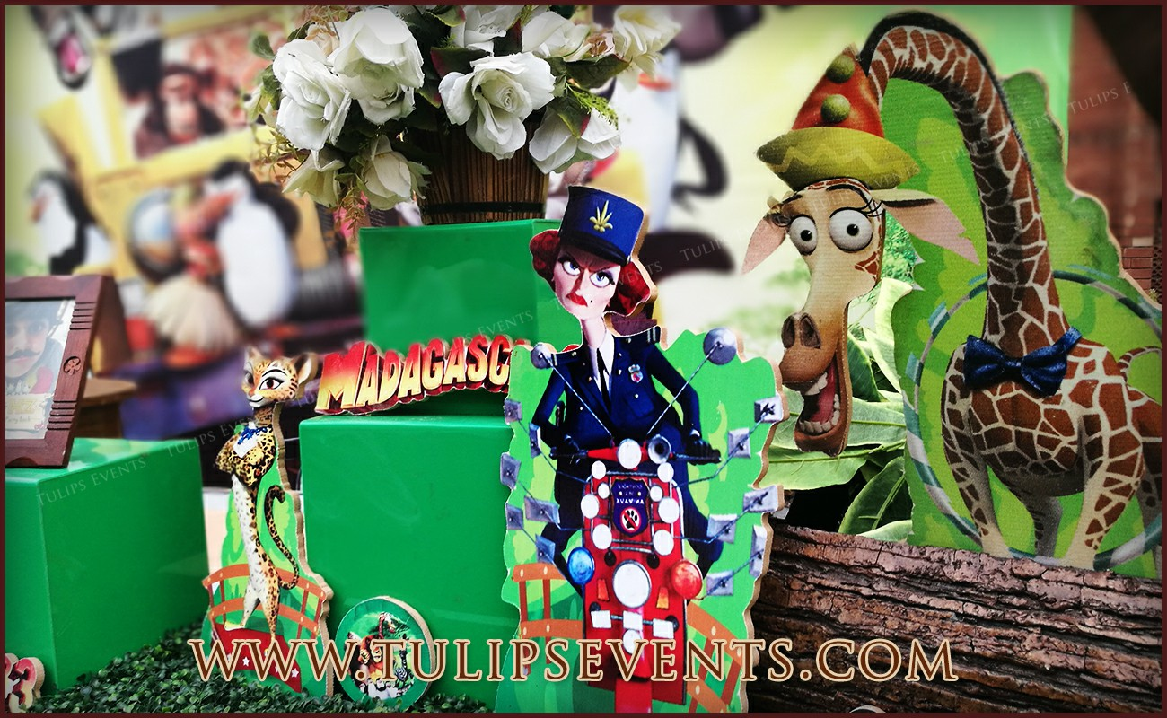 Madagascar Theme Birthday Party Ideas In Pakistan 3