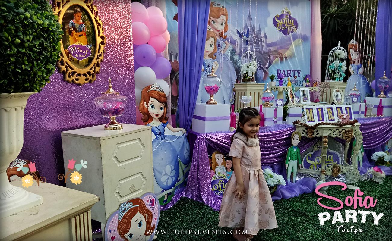Sofia Party Theme Decoration Ideas In Pakistan